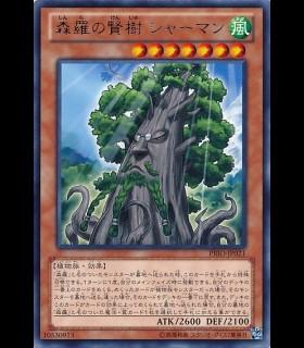 Sylvan Sagequoia