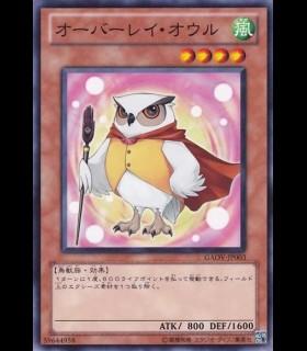 Overlay Owl