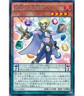 Crystal Protector