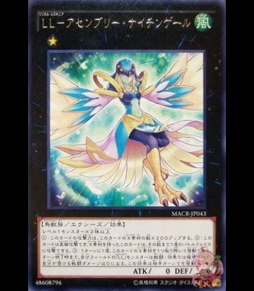 Lyrical Luscinia - Assembly Nightingale