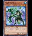 Green Turtle Summoner