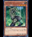Elemental HERO Woodsman