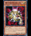 The Light - Hex-Sealed Fusion