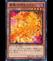Divine Dragon Apocralyph