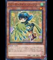 Lyrical Luscinia - Turquoise Warbler