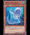 Nimble Sunfish